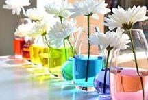 Rainbow Party | Rainbow Birthday / Rainbow Party | Rainbow Birthday | Rainbow Party Theme | Rainbow Food | Rainbow Decorations