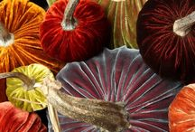 Emotive Autumn / A celebration of my favorite season