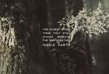 Creatures of Middle Earth / ~For more Middle Earth pins check out my many other Middle Earth boards!~