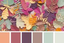 ⚜ color palettes ⚜