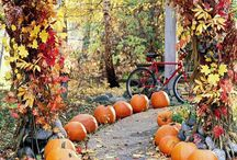 Fall Decorating / by Roxy Maddox