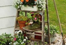 My garden / So many different ideas for the garden...for a house...for an apartment... / by Angela Brown
