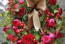 Beautiful Flowers / by Niki Budai
