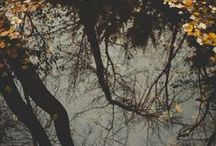 Autumn/Fall. Escapes. The Witchin' Hour / by Cri