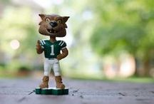 Ohio University  / Proud to be an OU alum :) / by Kasey Miller