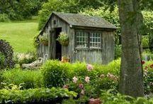 Greenhouses & Garden Sheds / Gardening