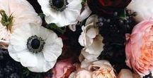 Flowers / fleurs / Les fleurs, une source inépuisable d'inspiration.