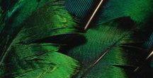 Green - Vert / Le vert, dans la nature, la déco et la mode. All I need is green !