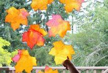 Autumn / by Mary Borden