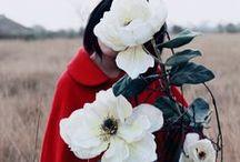 FLOWERS / by Carolyn Gavin