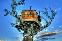 welcome to the tree house / by Raewyn Todd