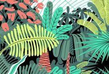 Design / by Heather Stickney