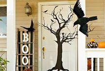 Halloween & Fall Decor / by Jennifer Schoen Slater