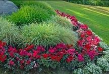 Gardening / by Debbie Woodruff