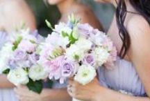 My Fair Wedding / by Lyss Woodard