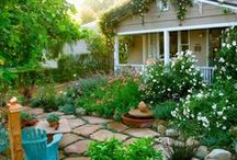 Kitchen Curb Appeal / Designing a kitchen garden in the front yard / by Little Green Bees