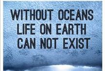 Oceans & Seas Protection