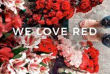 Evans | WE LOVE RED