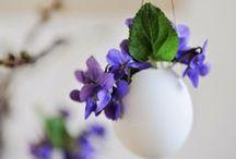 Easter & Spring / Decor & DIY