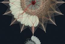 Brandspiration: Spiro Sweet / by Braid Creative