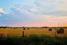 Braidspiration: Oklahoma Grown / by Braid Creative