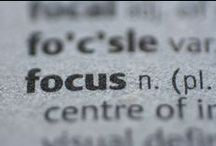 2013 - focus / by Amanda Boggs