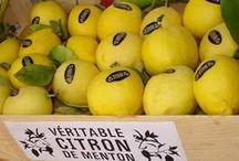 Le citron / Un produit du terroir devenu rare : le citron de menton... A découvrir car rien d'autre ne lui ressemble, avec son gout puissant mais pas amer, son odeur si caractéristique...