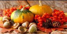 Les Produits du Terroir de l'automne / Mon epicerie fine de terroir a sélectionné d'authentiques produits du terroir francais pour l'automne figues cepes champignons chataignes giber ...