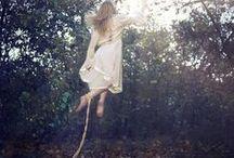 mphfpc: Olive Elephanta