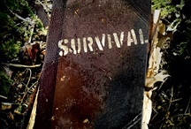 Emergency Survival and Homesteading / Being Prepared!