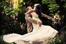 Picture Perfect Wedding / by Christine Lessen