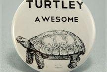 Turtle, turtle, turtle / by Betty Quiñones