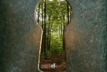 adventure <3 travel <3  / by Cassandra Reckmann Hoydal