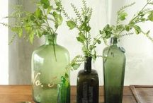 Vases, fill at will / by Jan Fogel