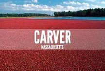 Carver, MA / The town of Carver is located west of Plymouth, off Routes 44 and 495.  Route 58 runs through the town.  Carver is home to many forms of wildlife, has many cranberry bogs and is a rural town with one elementary school and one middle-high school. / by Cherie Poirier