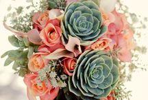 Fern, floral & greens / by Barb