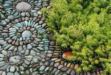 garden stuff / Fun ideas to try in my yard / by Linda Fredrickson