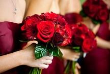 Weddings / by Cynthia Park
