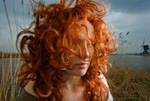 Redheads / I'm [used to be] a redhead. I love red hair and always have. Thus I always feel a little tug of joy when I see other redheads... / by Letha Colleen