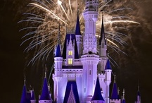Disney World at Night  / There's something special about Disney World after dark.