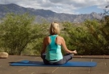 Healthy Lifestyle / Neat Tips and Tricks to Live a Healthy Lifestyle / by Miraval Resort & Spa