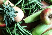 Emily's Produce CSA / by Emily's Produce