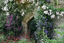 Gardens, Landscape and Exteriors / by Ruby Cooke