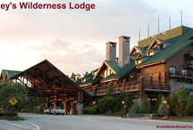 Disney's Wilderness Lodge  / Disney's Wilderness Lodge is a hotel at the Walt Disney World Resort in Florida.