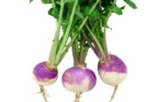 Turnips / by Emily's Produce