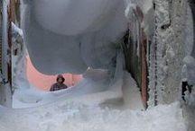 **Let snow***Let it snow*** / by Rhonda Grandhagen