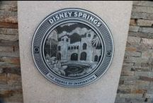 Disney Springs, formerly called Downtown Disney, at Disney World / Photos and facts about Disney Springs, which used to be called Downtown Disney, at the Walt Disney World Resort in Florida.