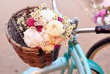 ♥ Spring Fashion 2014 / Der Frühling 2014 überrascht uns mit traumhaft schönen Outfit-Ideen und Schuhmodellen von Pumps mit Spitzenbesatz bis hin zu Pastell-Ballerinas - entdecke auch Du Frühlingsgefühle mit den Pins von Stiefelparadies!