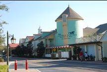 Disney's Saratoga Springs Resort / Disney's Saratoga Springs resort is a Disney Vacation Club property and hotel at the Walt Disney World Resort in Florida.