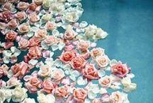 flowers / by Takashi Takimoto